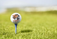 Taft Tigers boys golf