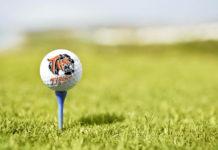 Taft Tigers boys golf