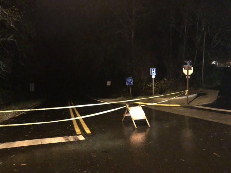Storm brings down tree on NE 22nd Street