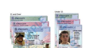 new dmv cards