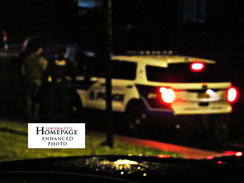 POLICE CRIME LOG