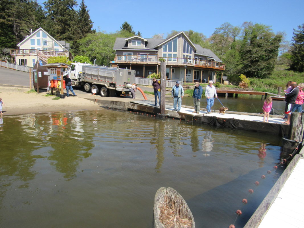 Regatta Park Dock
