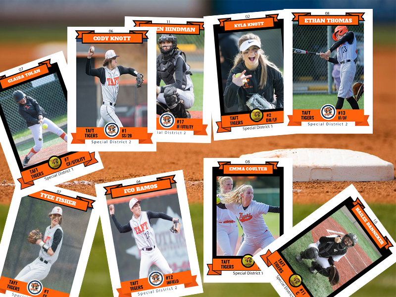 Tiger state cards