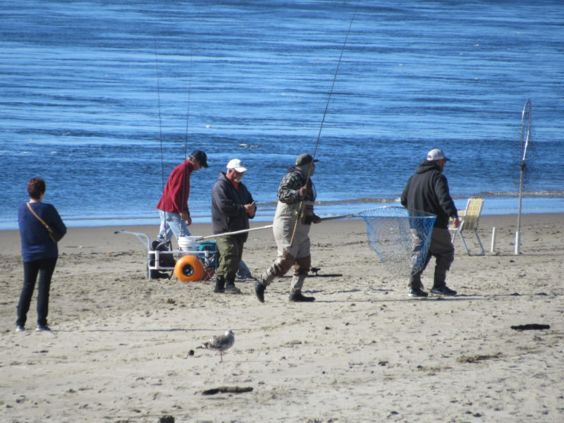 Lincoln City Fishing