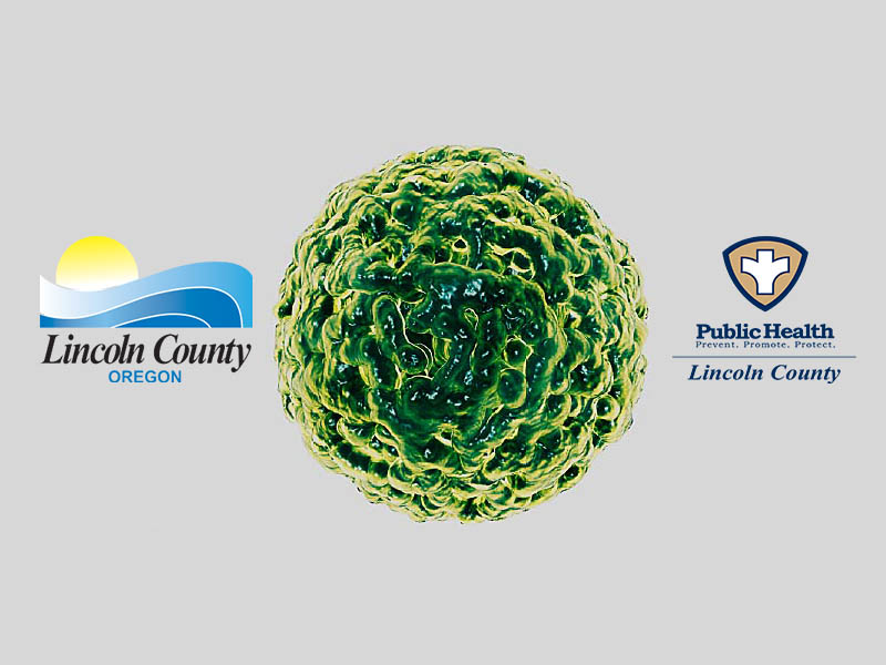Norovirus lincoln county