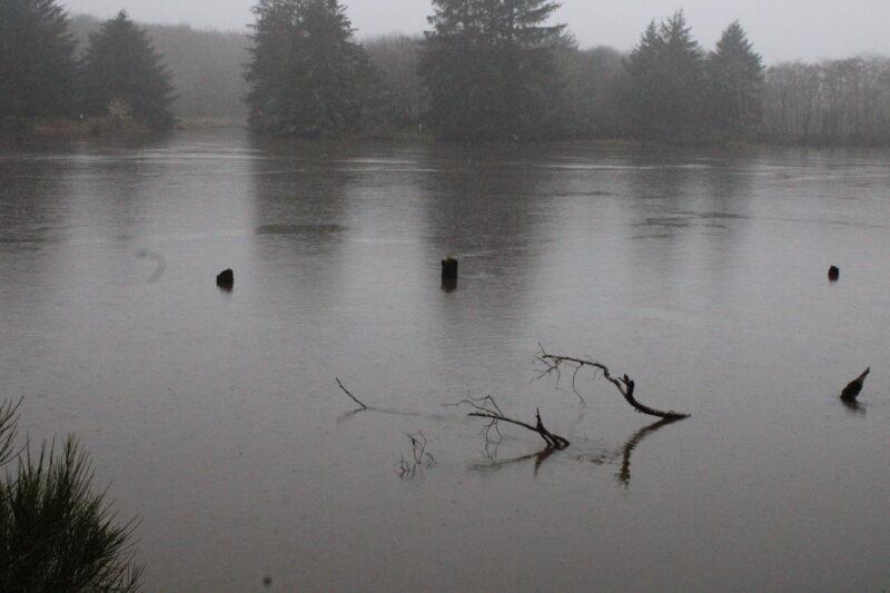 Siletz River Flooding